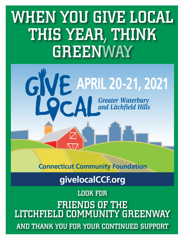 GIVELOCAL FLYER 2021-Layout 1